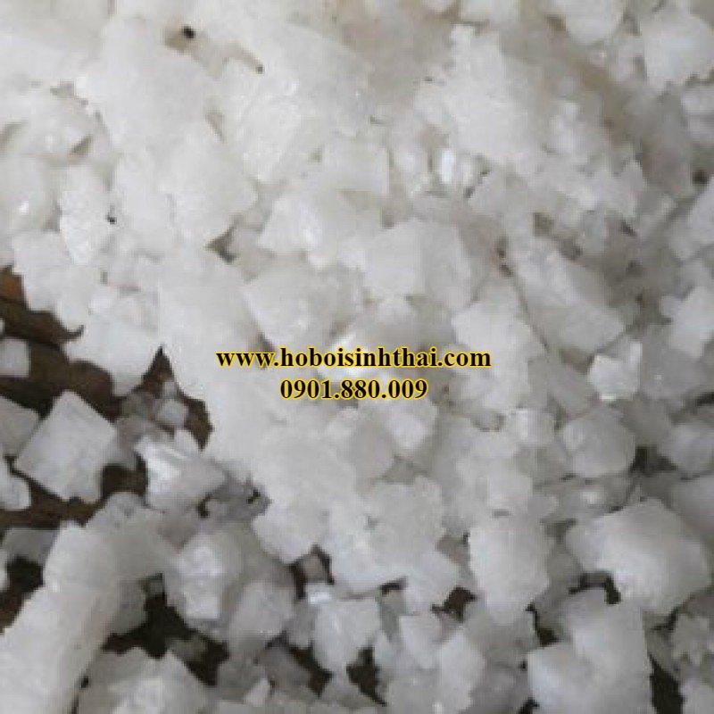 muối dùng cho hồ bơi uy tín
